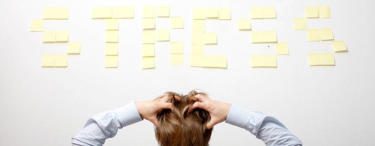 Fettstoffwechsel bei Stress