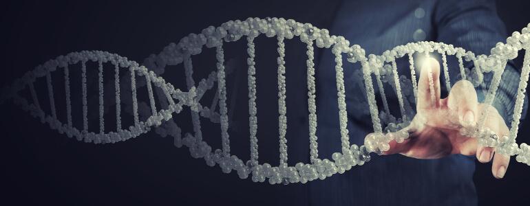 DNA Diät mit Stoffwechselanalyse