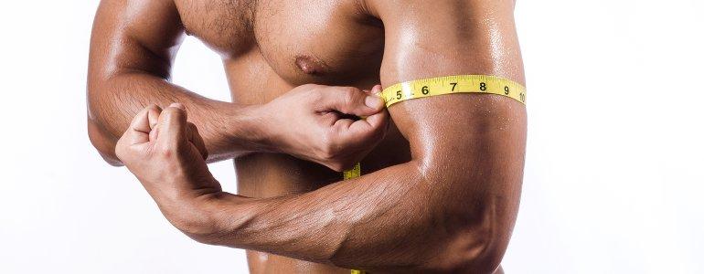 Grundumsatz erhoehen mit Muskelmasse