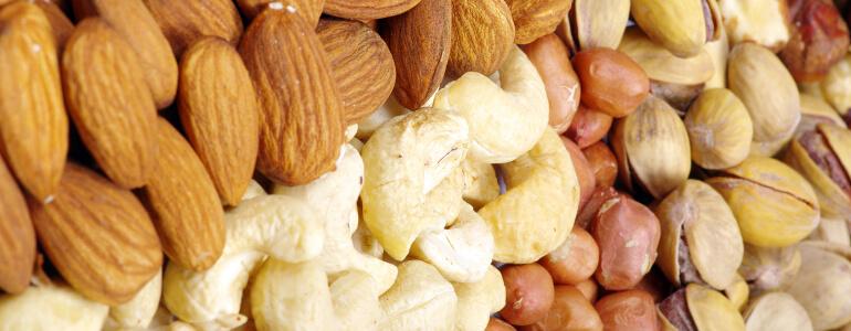 Nüsse Verdauung anregen