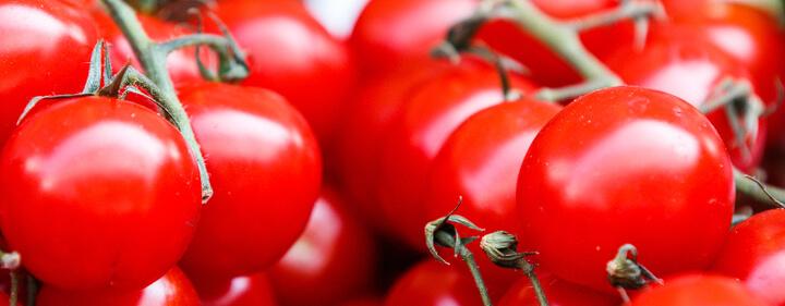 natuerliche appetitzuegler tomaten - Natürliche Appetitzügler