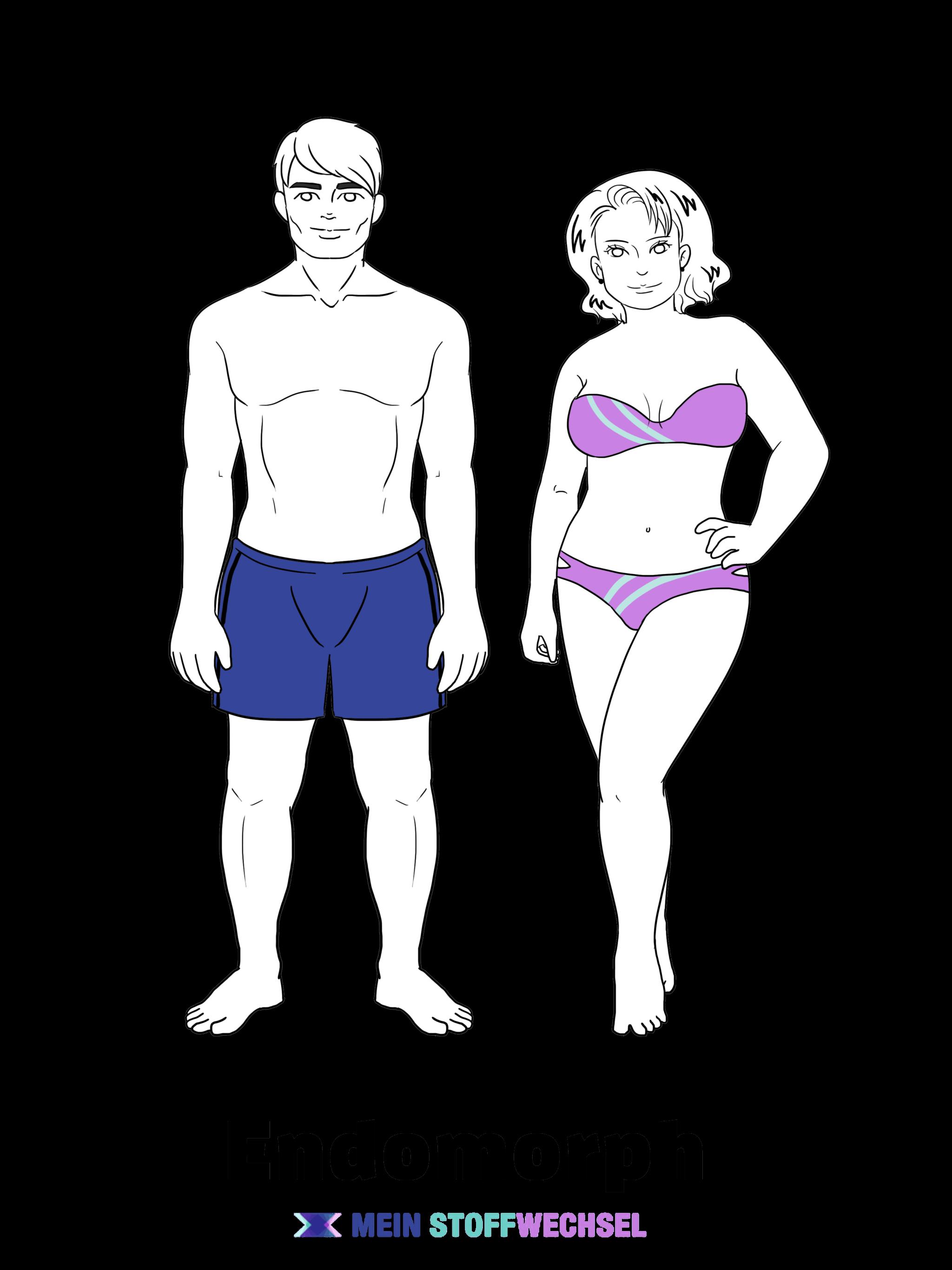 stoffwechseltyp Körpertyp endomorph