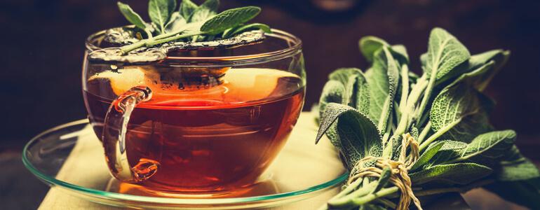 tee statt alkohol hilft verdauung - Hilft Alkohol bei der Verdauung?
